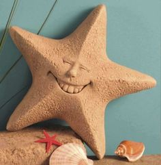 """Hand Cast Stone Feeling Unshellfish Plaque - Concrete Star Fish Face Sculpture by Creative Structures. $36.98. Dimensions: 8.5"""" W x 7.5"""" H x 2.5"""" D - Item Weight: 3.5 Lbs. - Made In The USA. Hand Cast Stone, Weatherproof & Waterproof, Handfinished With A Patina Wash To Accentuate The Details. Extremely Innovative Creations That Breathe Life And Bring Joy And Whimsy To Your Home Or Garden. Unique And Whimsical Works Of Art By George At Carruth Studio. A Copper Hook Is Embedded ..."""