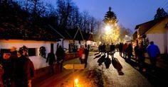 Advent in der Kellergasse Advent, Concert, Basement, Wine, Concerts