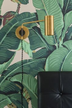 love the jungle painted walls