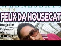 Felix Da House Cat- We All Wanna Be Prince (fanmade video)