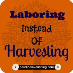 Parenting: Laboring Instead of Harvesting