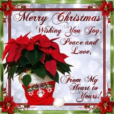 Christmas/Flowers section. Send these Christmas flowers to anyone with these… Merry Christmas Quotes Wishing You A, Merry Christmas Wishes Text, Short Christmas Wishes, Christmas Thoughts, Christmas Blessings, Merry Christmas To You, Christmas Love, Christmas Images, Christmas Qoutes