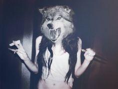 Wolf head screaming