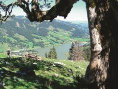 View above Schwarzsee. © UFT/ Sabine Moser #lake #hiking #nicelandscape #switzerland