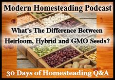 Today isDay 13 of our 30 days of homesteading Q&Aon the podcast where I have reached out to some of the best bloggers and podcasters in the homesteading space to answer your questions about h…