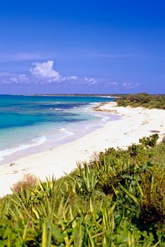 The beach ~ Turks and Caicos #Caribbean