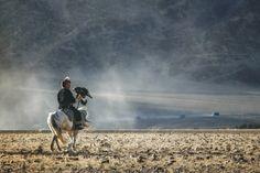 festival-golden-eagle-in-mongolia-04