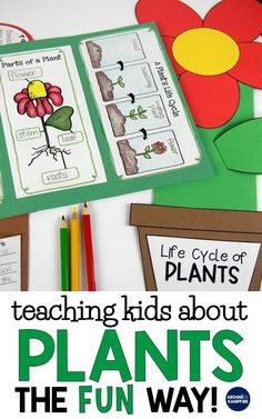 Find creative, hands-on plant life cycle activities for teaching kids about chlorophyll, pollination, germination, and seed dispersal the fun way! Ideal for 1st, 2nd, and 3rd graders learning about the life cycle of plants with unique, hands-on science experiments your students will love!