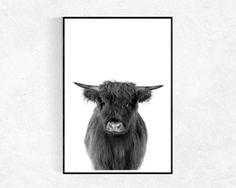 Highland Kuh Print Kuh-Poster Farm Animal-Print schwarz und