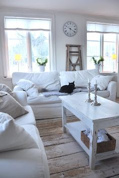 Love the cat!  But how does the white sofa stay white??