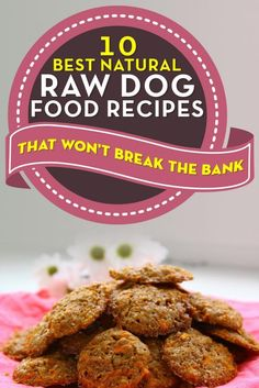 Best Natural Homemade Raw Dog Food Recipes for Dogs