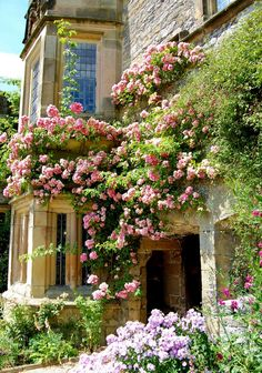 abundant roses and a country house