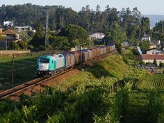 Comboio Especial n.º 92218 - Midões