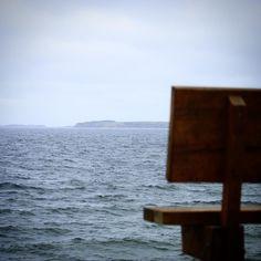 Udsigt fra Bobakkerne Helnæs #visitfyn #fyn #nature #visitdenmark #naturelovers #natur #denmark #danmark #dänemark #opdagdanmark #naturegram #mitassens #spring #forår #march #natureshots #naturegram #countryside #flyfishing #seatrout #sea #assensnatur #assens
