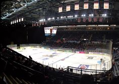 Sheffield Steelers - Motorpoint Arena - This is my church. Sheffield Steelers, Ice Hockey, Blue, Hockey Puck, Hockey