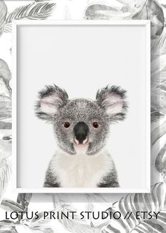 Koala Bear Print for Nursery. Nursery Decor, Printable Art, Australian Animal Art, Baby Koala Bear, Animal Art for Kids, Baby Shower Gift, Cute Koala Bear Art