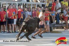 torodigital: El ganado de Juan Faet protagonista en la Playa d...