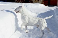 Uplifting So You Want A American Pit Bull Terrier Ideas. Fabulous So You Want A American Pit Bull Terrier Ideas. Chien Bull Terrier, Pitbull Terrier, Best Dog Breeds, Best Dogs, Pit Bull, Miniature Bull Terrier, Bullen, Bully Dog, Dog Games