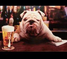 English Bulldog Shirt Order here: https://www.sunfrog.com/JohnyD/bulldog socute #buldog