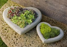 Hypertufa containers. Can use the large heart shaped plastic serving trays available around Valentines day at the dollar store as molds.