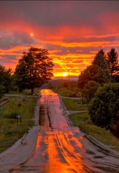 Wet country road at sunset