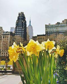 Cómo orientarte en Nueva York: calles y avenidas