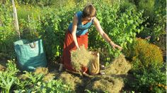 Bodenpflege mit Effektiven Mikroorganismen
