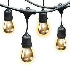 Costco.  Feit Electric Outdoor Weatherproof String Light Set | 48 Feet Long | 24 Light Sockets | 2 Feet Bulb Spacing | Includes 36 Bulbs