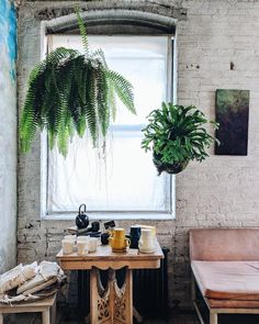 A Day in the Life of a NYC Plant-Lover