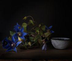 Cold Porcelain Flowers, Clematis, Plants, Plant, Planets