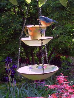 Teacup bird feeder.... use plastic bowls . put glass container in middle of bowls , fill around them with shells .