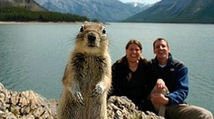 A squirrel jumps up and is caught in a time-delayed photo of Melissa Brandts and her husband in Banff National Park three years ago.