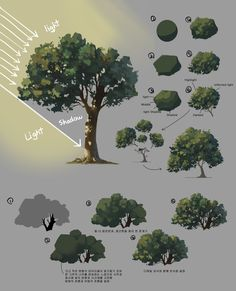 How to Art — Plant Sketches by Shin jong hun Digital Art Tutorial, Digital Painting Tutorials, Art Tutorials, Concept Art Tutorial, Digital Paintings, Planta Digital, How To Pixel Art, Tree Sketches, Plant Sketches