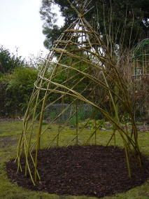 Spiral willow weaving... bean teepee?
