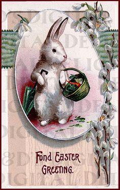 EASTER Bunny Ready For Rain. VINTAGE by DandDDigitalDelights