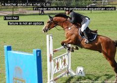 failure is not an option - Equestrian - Quotes Funny Horse Memes, Funny Horses, Cute Horses, Horse Love, Equine Quotes, Equestrian Quotes, Equestrian Problems, Horse Riding Quotes, Horse Jumping Quotes