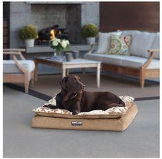 Luxury Dog Bed Pillow Top Pet Orthopedic Napper Large Memory Foam Tan Cow Print #KS