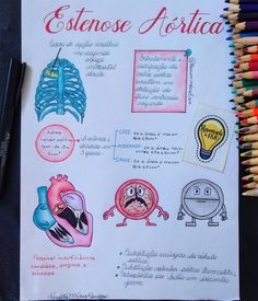 "Resumindo a Fisio no Instagram: ""Estenose aórtica é um estreitamento da válvula aórtica. Essa válvula é a que permite o fluxo de sangue desde o ventrículo esquerdo do…"" Nursing School Notes, Medical School, Med School, School Fun, First Aid Tips, Mental Map, Essay Tips, Forensic Anthropology, Med Student"