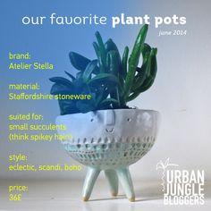 Favorite plants pots