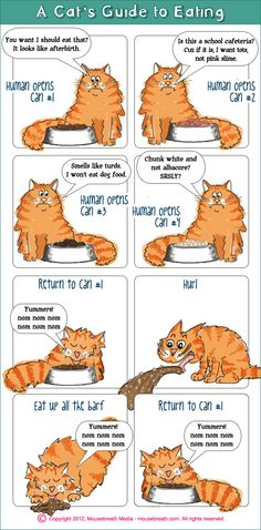 Friday Funnies: A Cat's Guide to Eating [Cartoon]