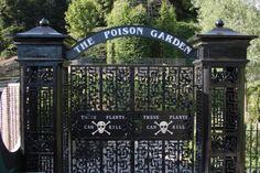 Image detail for -Poison Garden gates