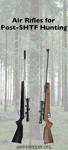 7344c6831 Air rifles are the perfect, stealthy solution for providing food for your  family after SHTF