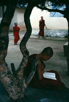 Natural light reading