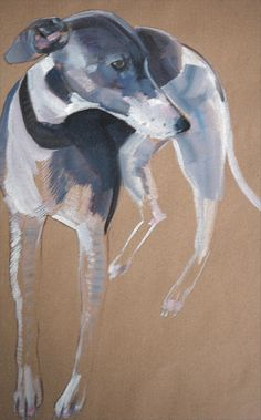 greyhound/ whippet/ lurcher type dog, in pastels, by sally muir Animal Paintings, Animal Drawings, Art Drawings, Illustrations, Illustration Art, Greyhound Art, Italian Greyhound, Dog Artist, Dog Portraits