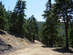 tehachapi ca | tehachapi ca detailed profile tehachapi ca houses data california ... Tehachapi mountain park