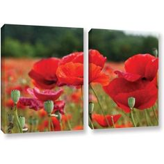 ArtWall Lindsey Janich Red Flower 2 inch 2-Piece Floater Framed Canvas Set, Size: 24 x 36, Green