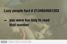 Lazy people fact #2134934561203