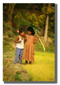 Sweetness .  Bangladesh
