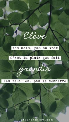 The Secret – Collection Of Inspirational Quotes – Viral Gossip Best Inspirational Quotes, Motivational Quotes, Gestion Administration, Green Quotes, Spiritual Development, Quotes About God, Meaningful Quotes, Poetry Quotes, Good Vibes