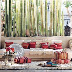 Moroccan Wedding Blanket  + cacti